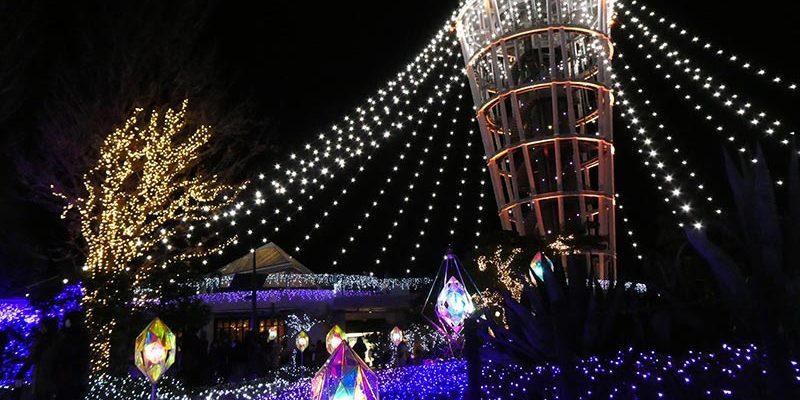 Jewel of Shonan Enoshima Illumination