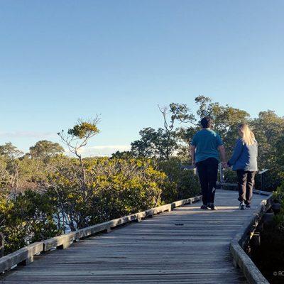 Nudgee Beach Wetlands Boardwalk