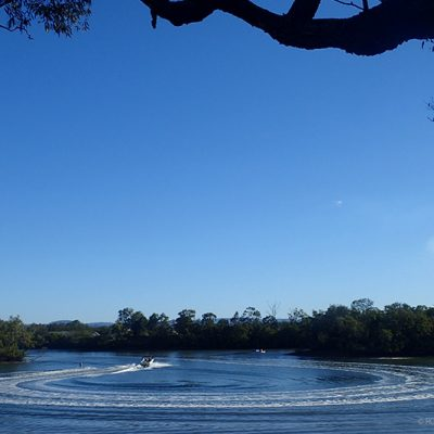 Explore Acacia Park and Set up a Picnic