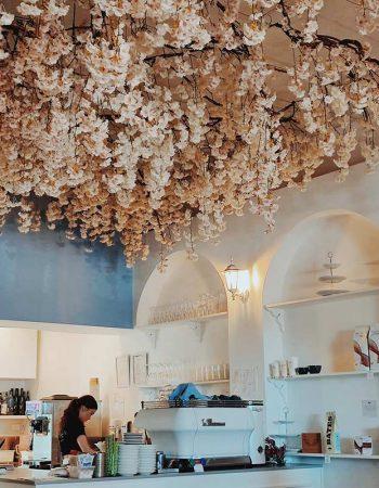 Escape to The Bloom Room Café