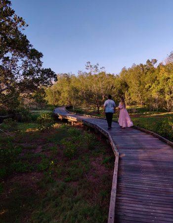 Scenic Picnic and Stroll at Tinchi Tamba Wetlands Reserve